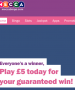 mecca bingo latest offer bingo sites
